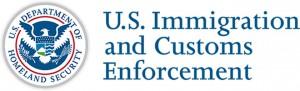 Confiscación de Dominios de Internet (Immigration and Customs Enforcement)